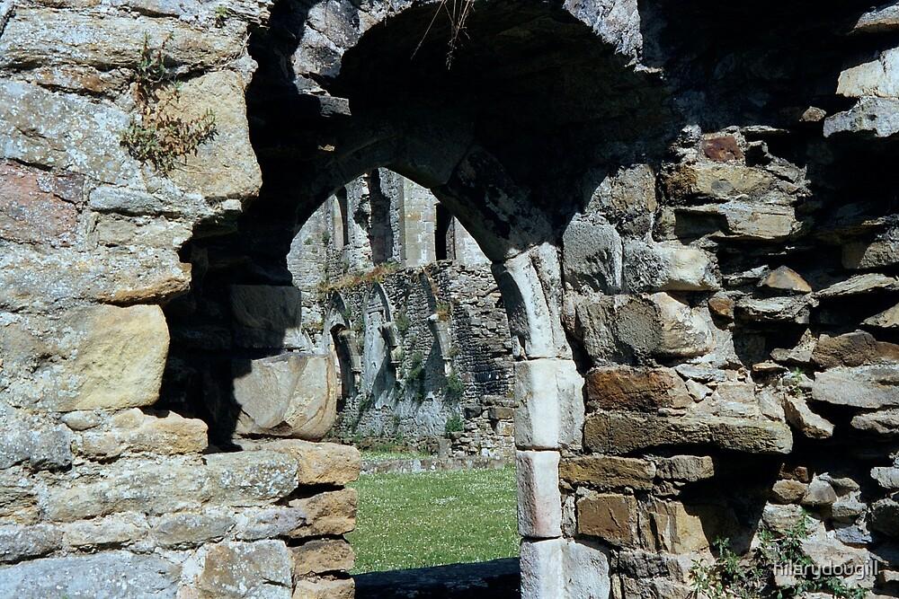 Through the Portals by hilarydougill