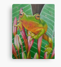 Tropical Frog Canvas Print