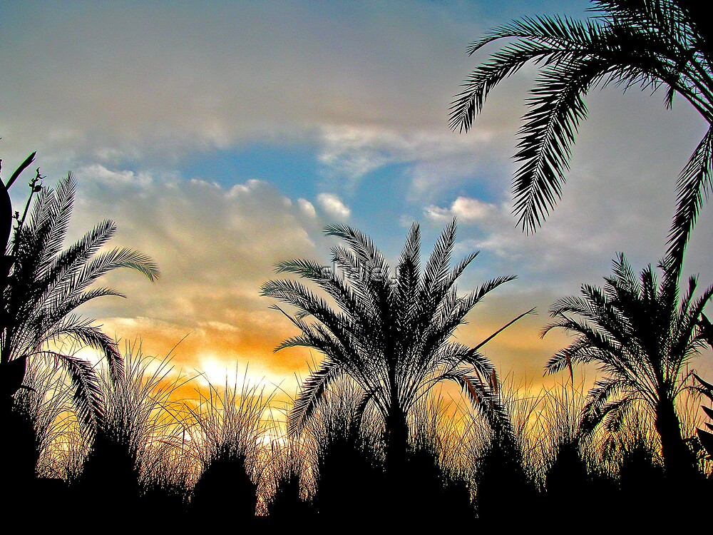 Corniche Sunset by shaley