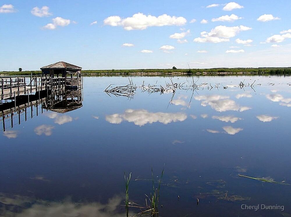 reflected moment by Cheryl Dunning