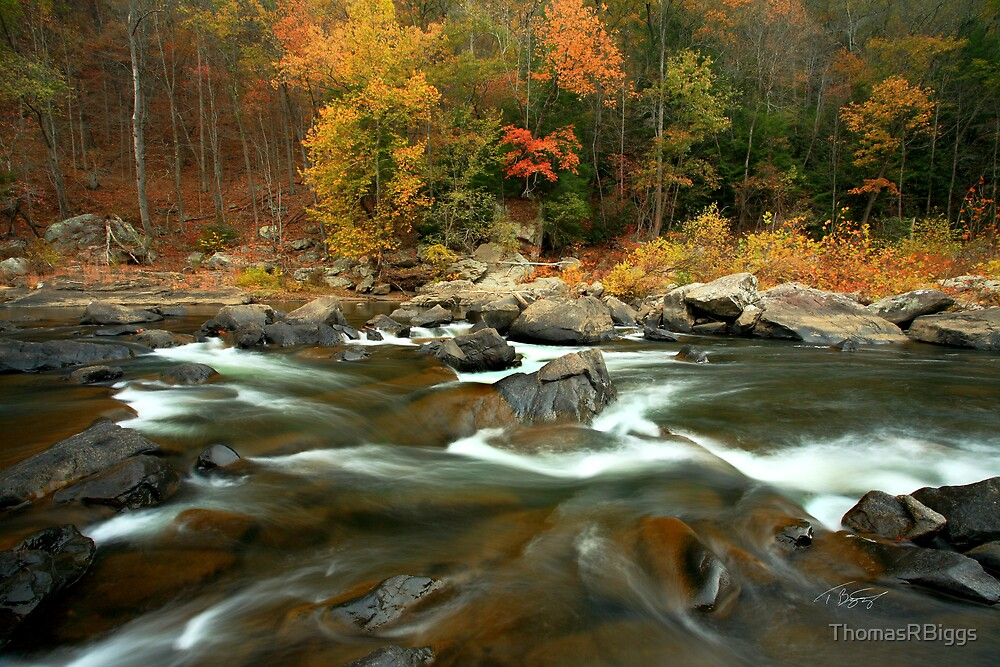 Russell Fork River by ThomasRBiggs