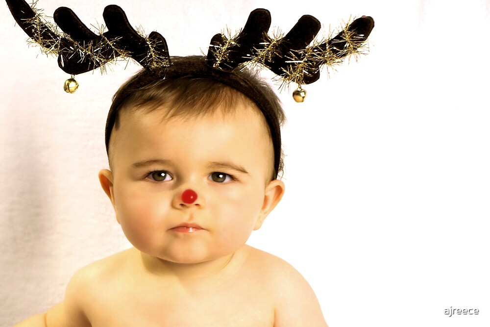 Rudolph!!!! by ajreece