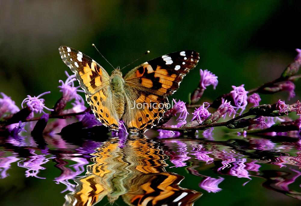 Reflected Beauty by Jonicool