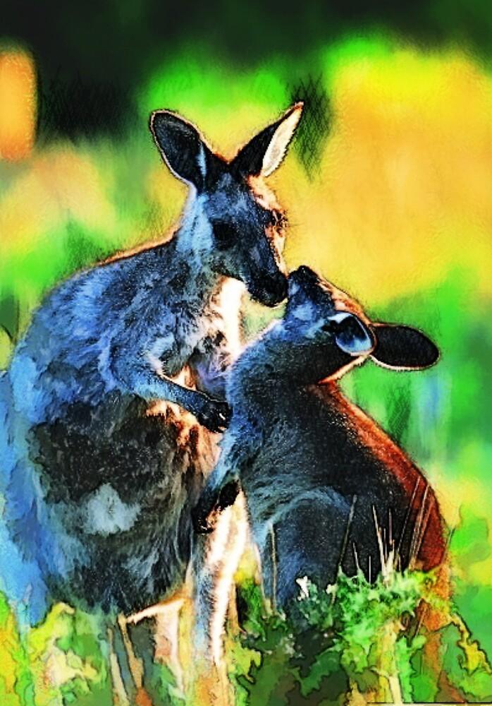 Kangaroo by andysaville