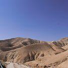 On my way to the desert by Nenad  Njegovan
