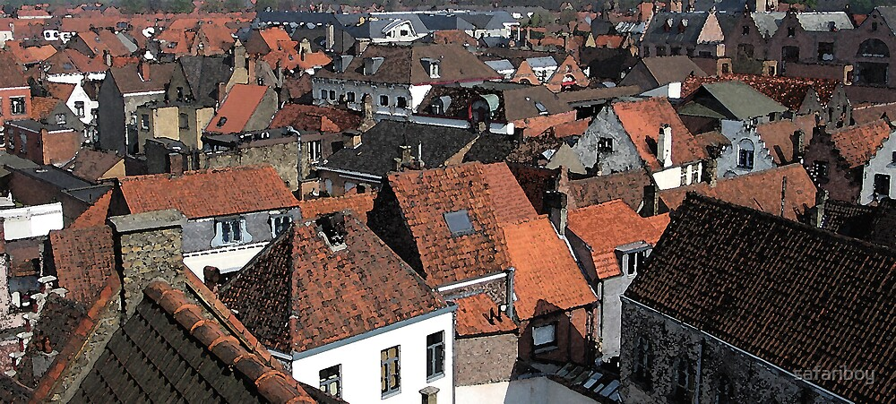 Rooftops of Brugge by safariboy