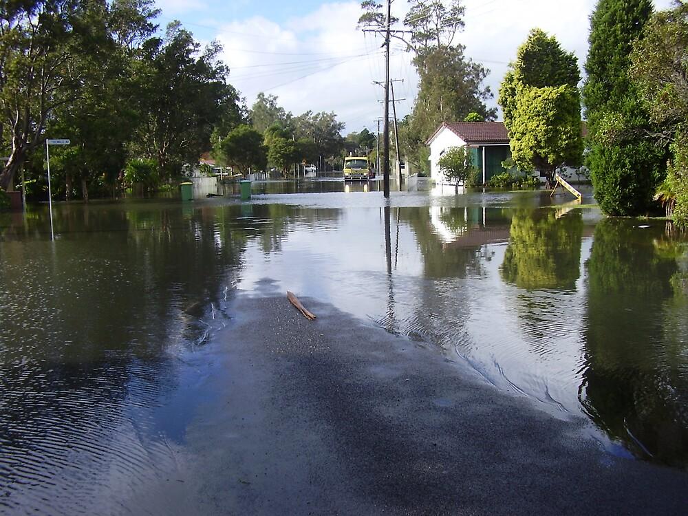 floods at budgewoi by killzone350z