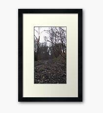 Tranquil walk along abandoned railway Framed Print