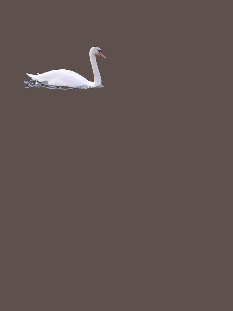 Swan by lcarse