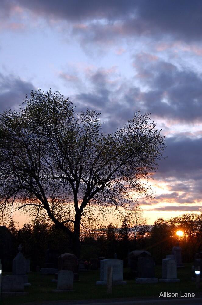 Graveyard Sunset by Allison Lane
