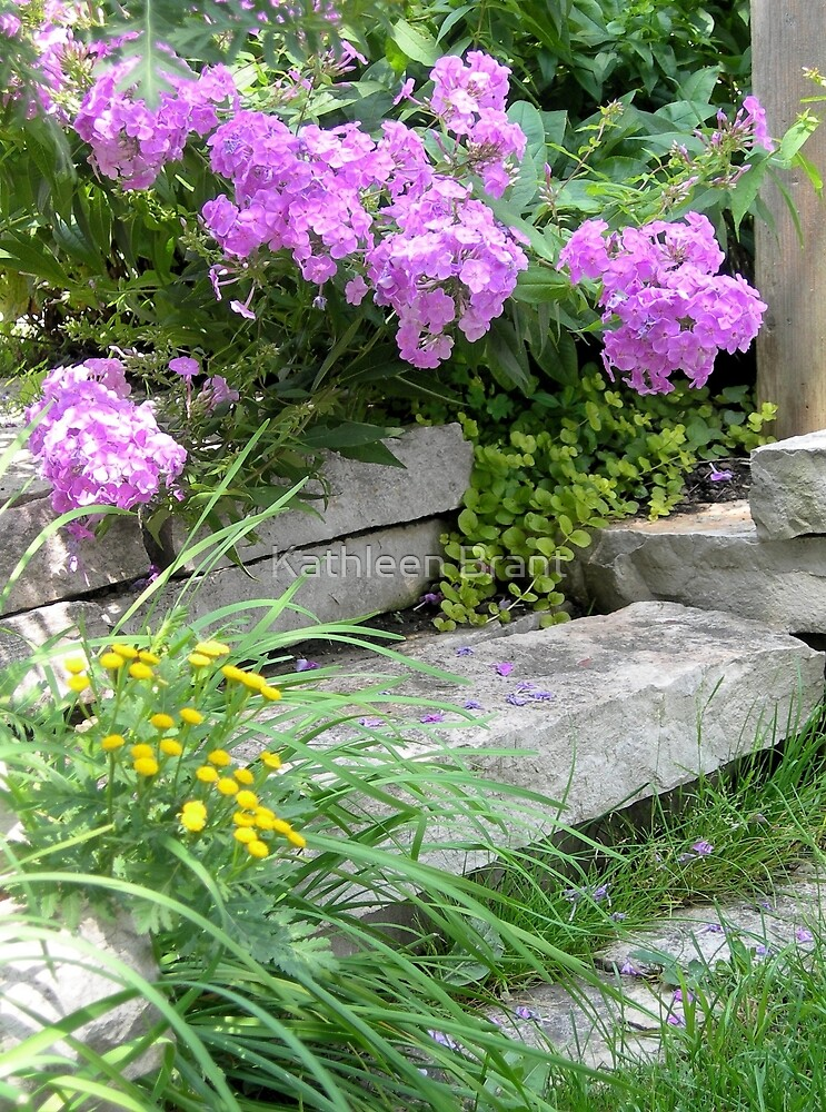 Garden Steps by Kathleen Brant