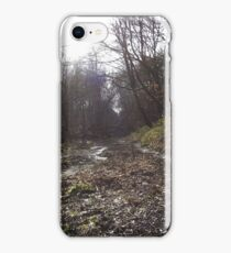 Tranquil woodland iPhone Case/Skin