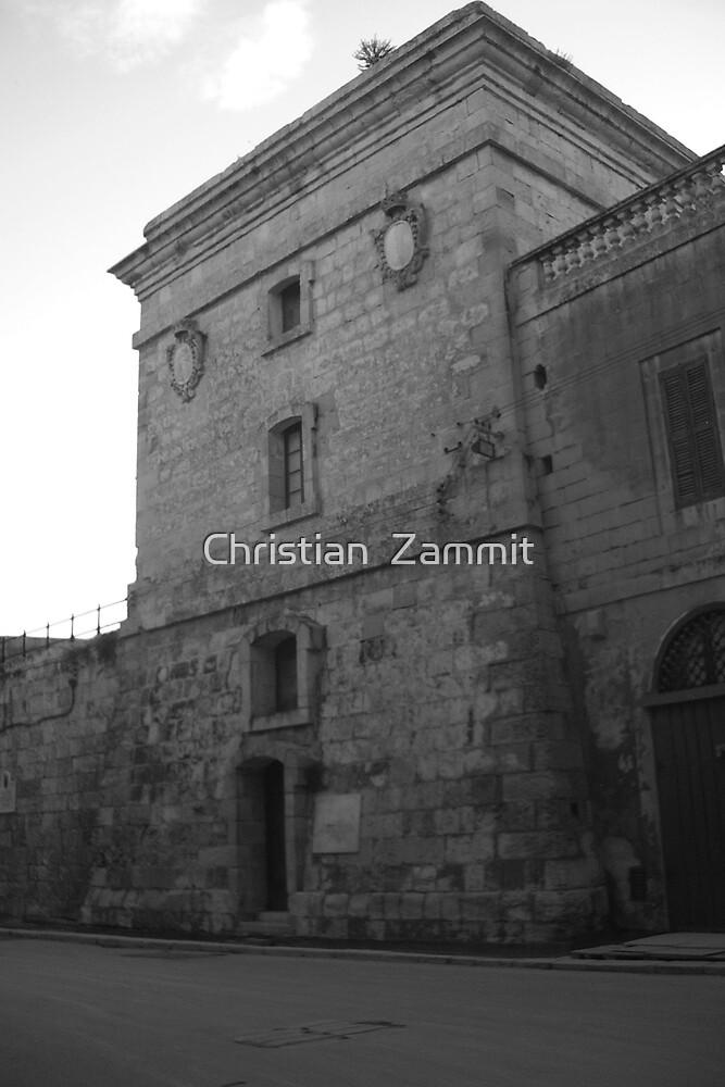 The Tower of Mdina by Christian  Zammit