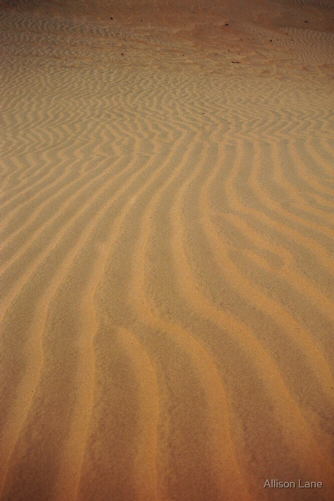 Sand Abstract by Allison Lane