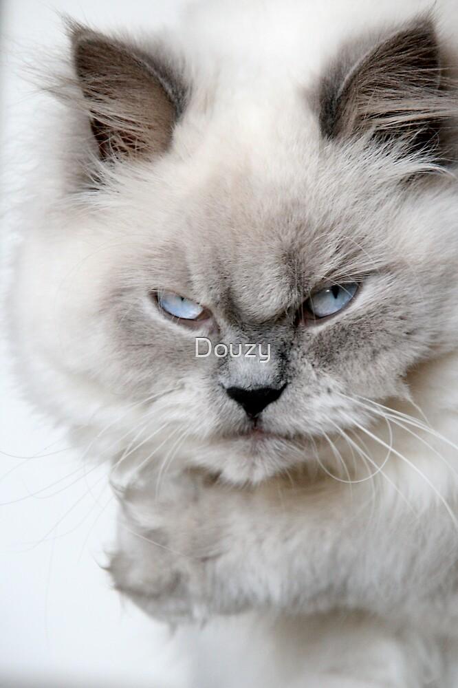Not Happy by Douzy