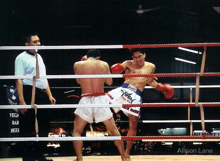 Thai Kickboxing by Allison Lane