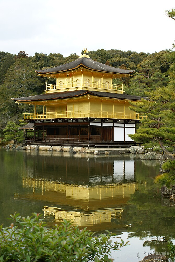 Japan - Golden Temple Reflection by taztravels