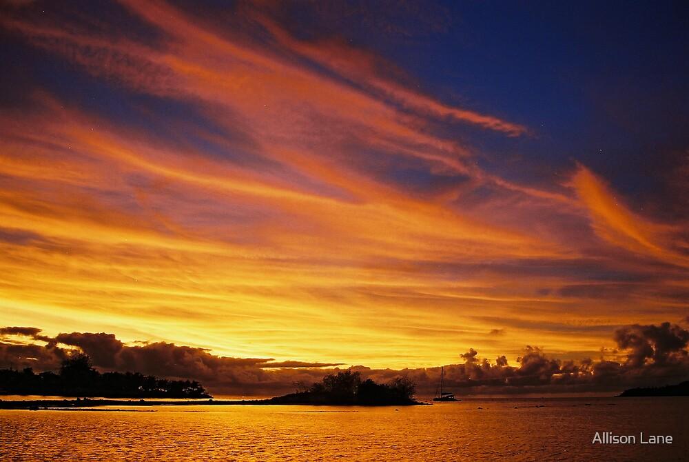Fiji Sunset by Allison Lane