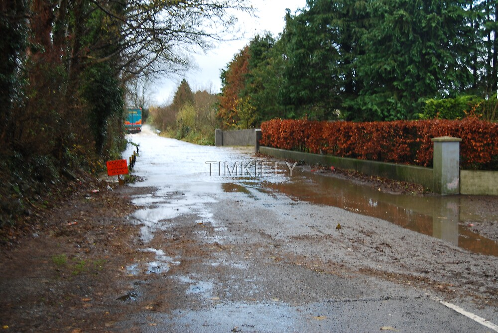 IRISH  ROAD FLOODED by TIMKIELY
