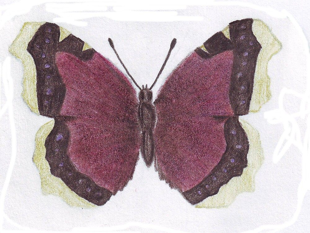 Butterfly 2 by Ruth Bretherick