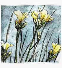 Feld Blumen in der Dämmerung Poster