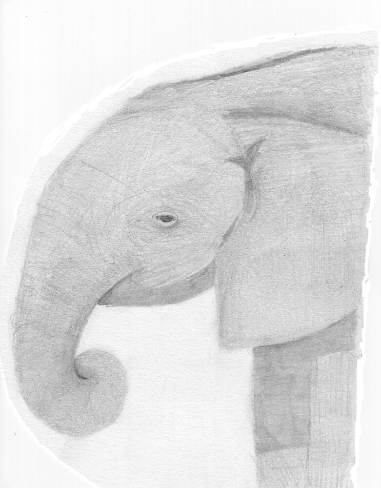 Baby elephant by Ruth Bretherick