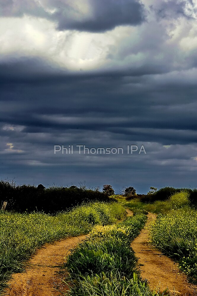"""""""Storms on the Path of Life"""" by Phil Thomson IPA"""