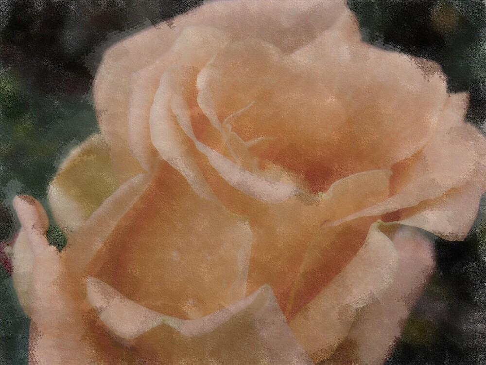 Paper Rose by mmrich
