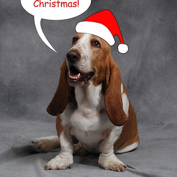 Christmas Basset by ronibgood