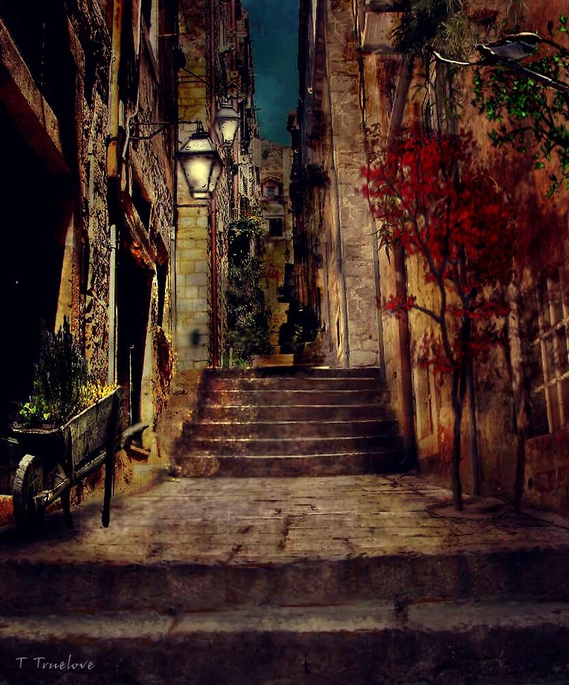 In the village by TTruelove