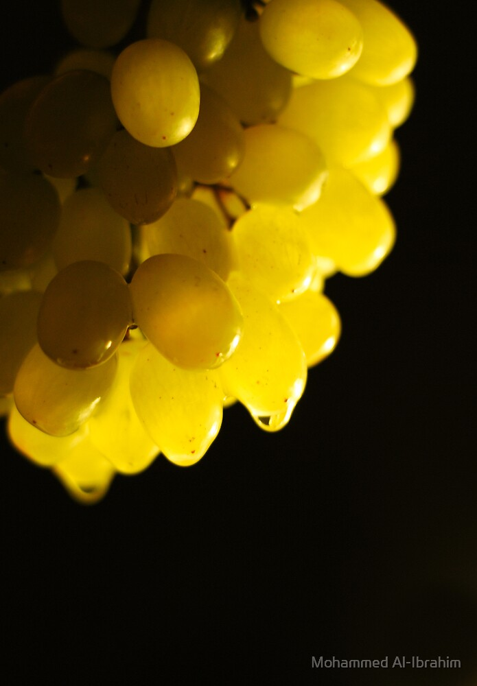 Grapes by Mohammed Al-Ibrahim