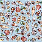 Gifts from the Sea by James & Laura Kranefeld