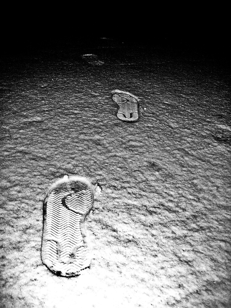 Prints in the Snow by Tommy Seibold