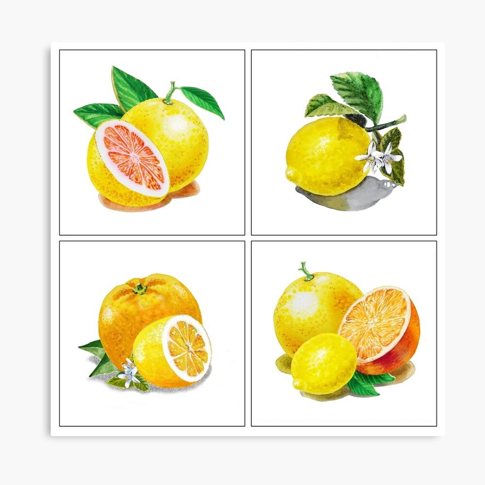Vitamin C Canvas Print - Lemon Fruit Wall Decor - Lemon Wall Decor