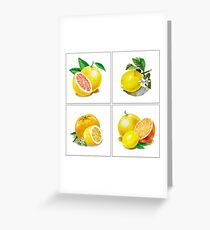 Vitamin C Greeting Card
