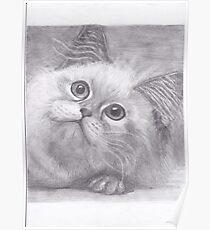 Kawai cat Poster