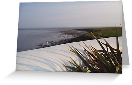View from the roof  of the West Usk Lighthouse by Danielle  Sheahan