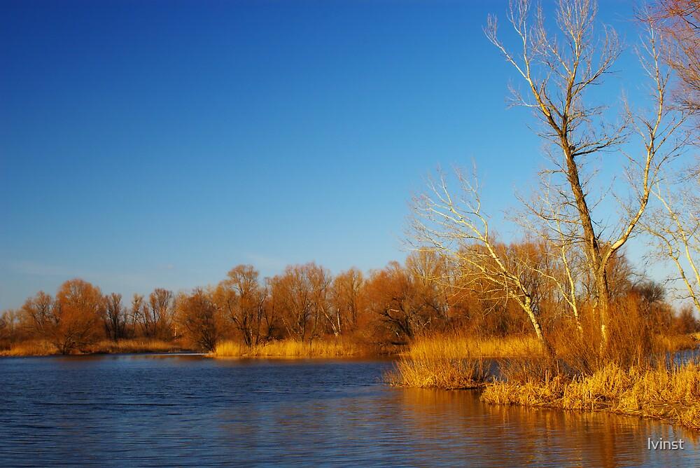 Winter landscape by lvinst