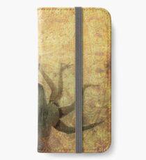 Celestial Goddess iPhone Wallet/Case/Skin