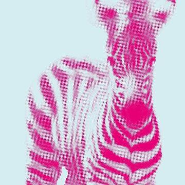 Zebra 05 von froileinjuno