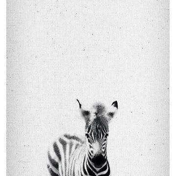Zebra 06 von froileinjuno