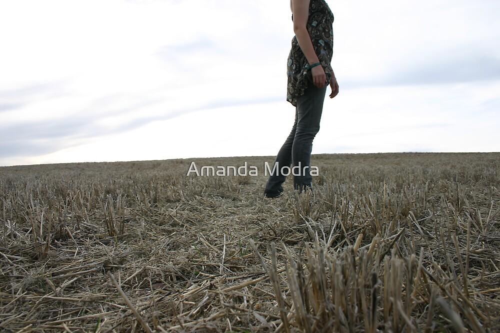 freedom in the fields by Amanda Modra