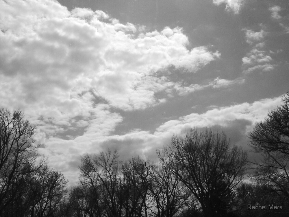 Dark Sky by Rachel Mars