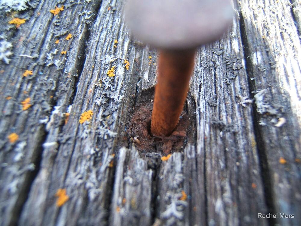 Rusty Nail. by Rachel Mars