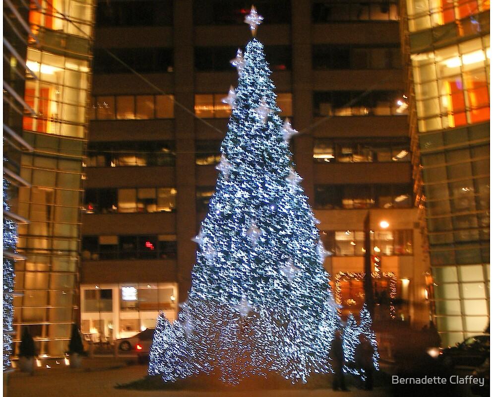 Merry Christmas by Bernadette Claffey