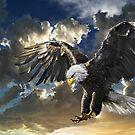 BALD EAGLE by DilettantO