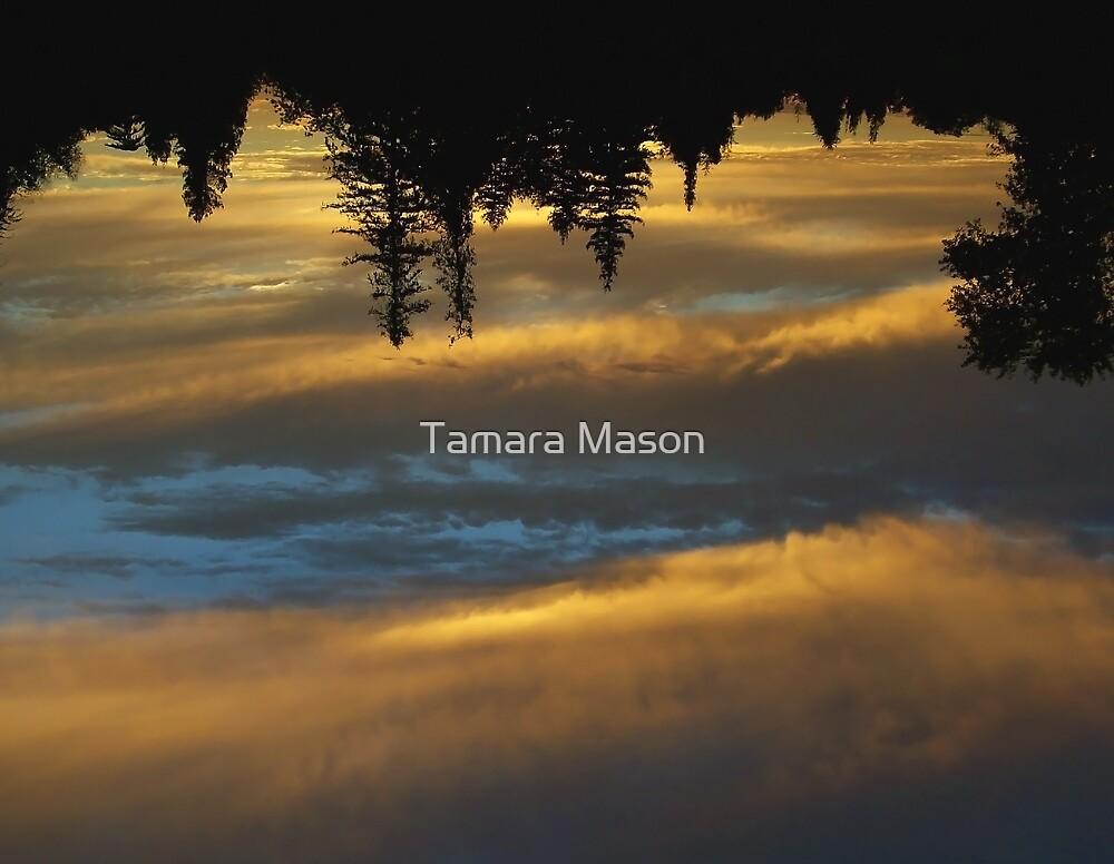 Sunset Tide by Tamara Mason
