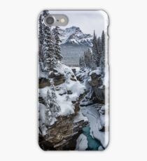 The Contrasts of Winter iPhone Case/Skin