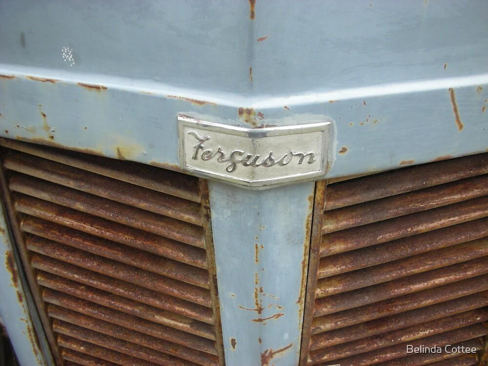 ferguson by Belinda Cottee