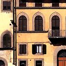 Buildings, Florence. by malcblue